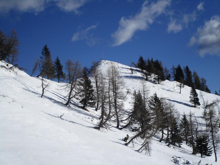 """Corso di Avvicinamento alla montagna """"Neve e Ciaspole"""""""