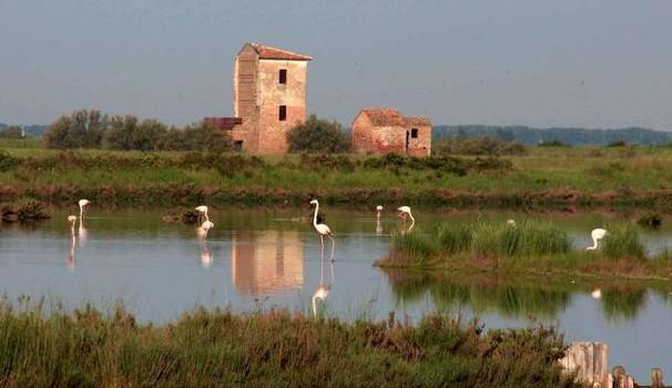domenica 15 aprile 2018 - La perla del Delta, ieri il sale, oggi la biodiversità: la Salina di Comacchio