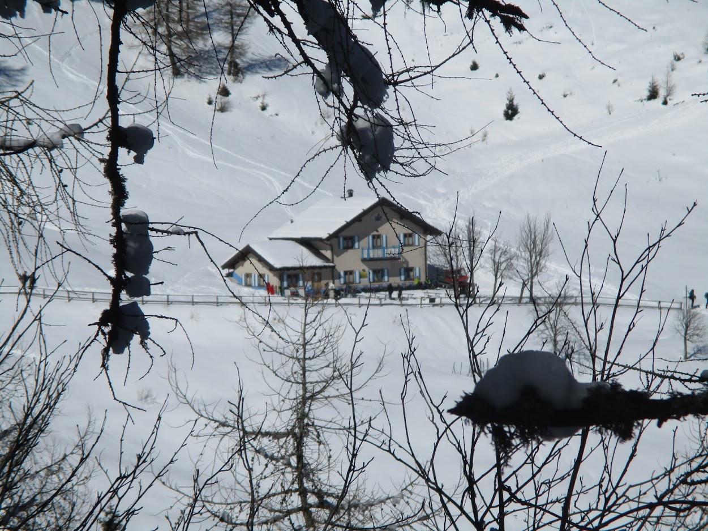 Domenica 3 febbraio – Ciaspolando nei boschi feriti della Valsugana