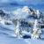 043paola-gattolinisassungher-invernalesassungher-val-badia