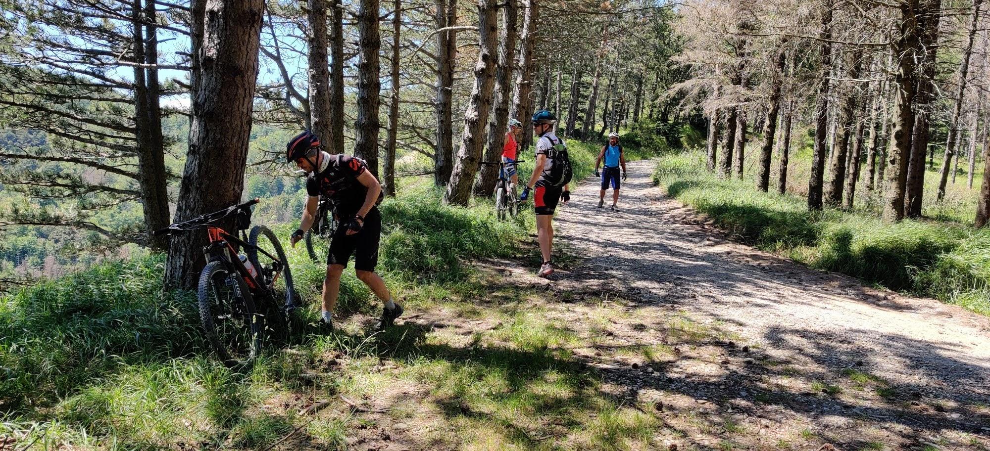 giugno 2020 – Foreste Casentinesi -Tredozio