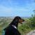 015aurora-canalecompagni-di-escursionibrisighella