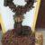 036fabio-fabbrile-chiavi-di-cibianacibiana-zoldo
