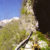046paola-gattolinimonte-di-mezzo-il-fedele-guardianoda-sesto-al-forte-mitterberg