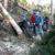 077gabriele-villaassistenza-morale-nel-bosco-devastatoforno-di-zoldo