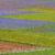 045franca-ganzarolligeometrie-in-campocastelluccio-norcia